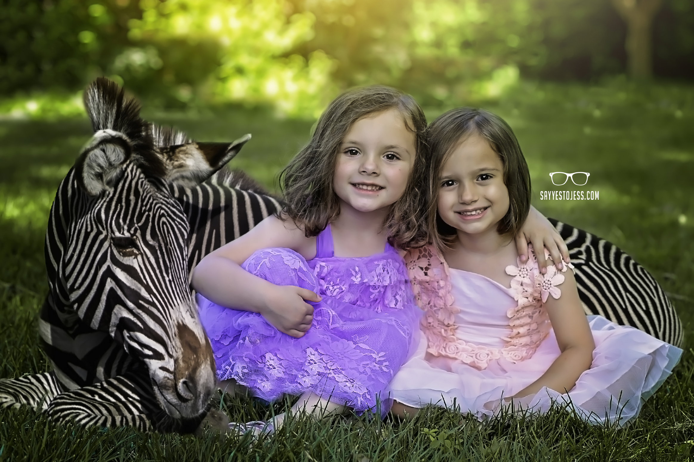 Little girls get photos done with Zebra by Cincinnati Ohio Family Photographer Jess Summers of Say Yes To Jess