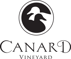 Canard-symbol-with-logotype.png