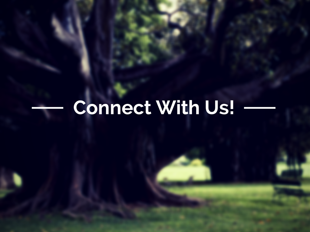 Connect With Us.png