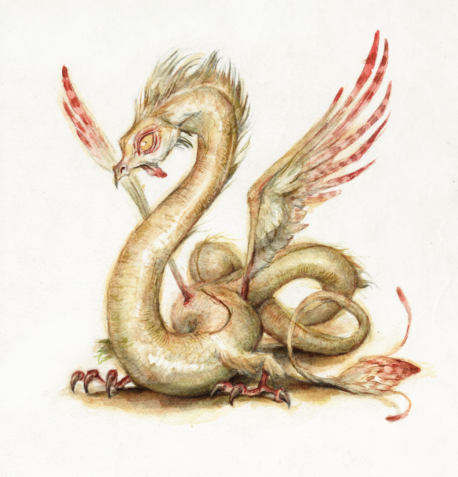 illustration_yellowdragon2.png