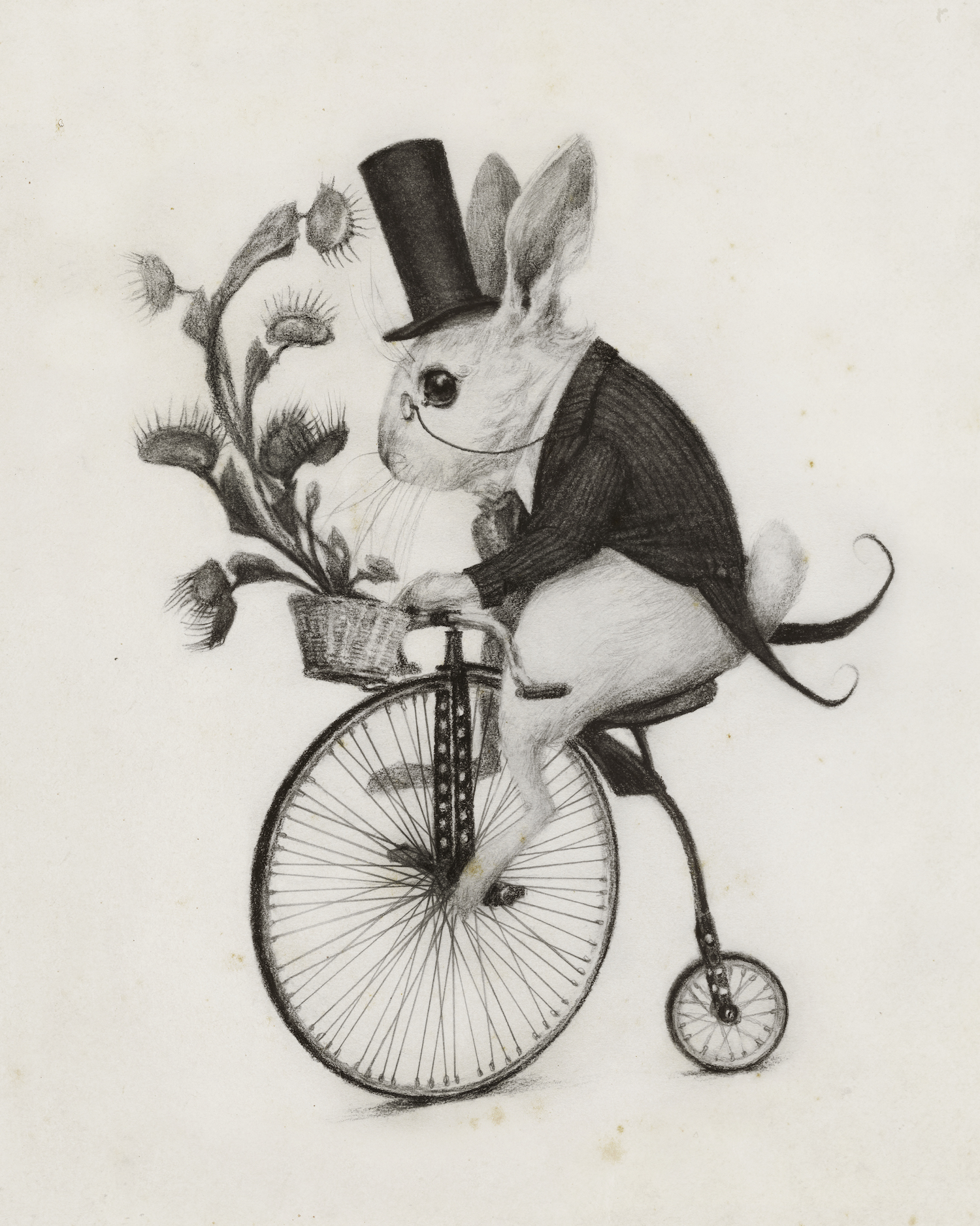 illustration_deliveryrabbit.jpg