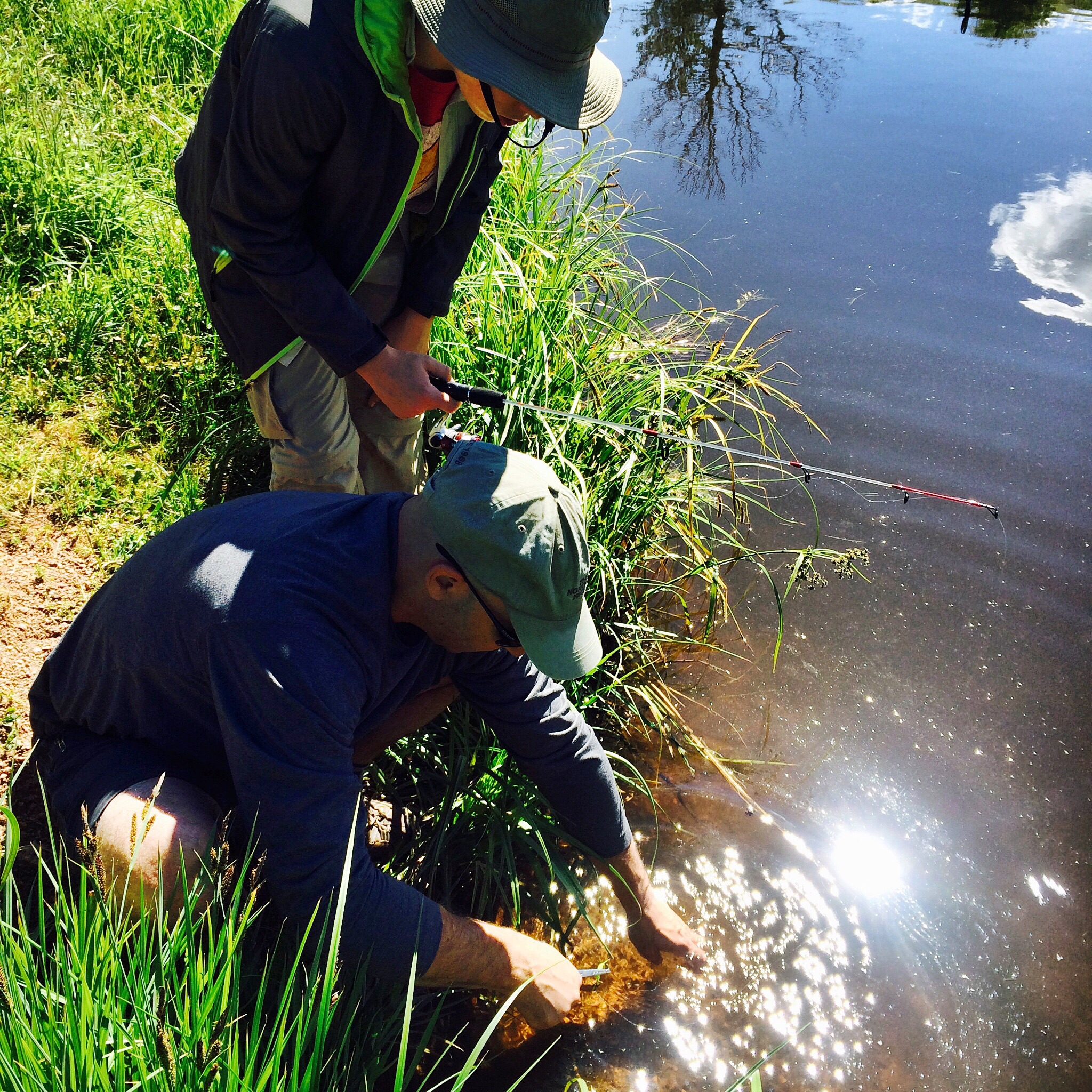 """Releasing a 14.5"""" Brook Trout"""