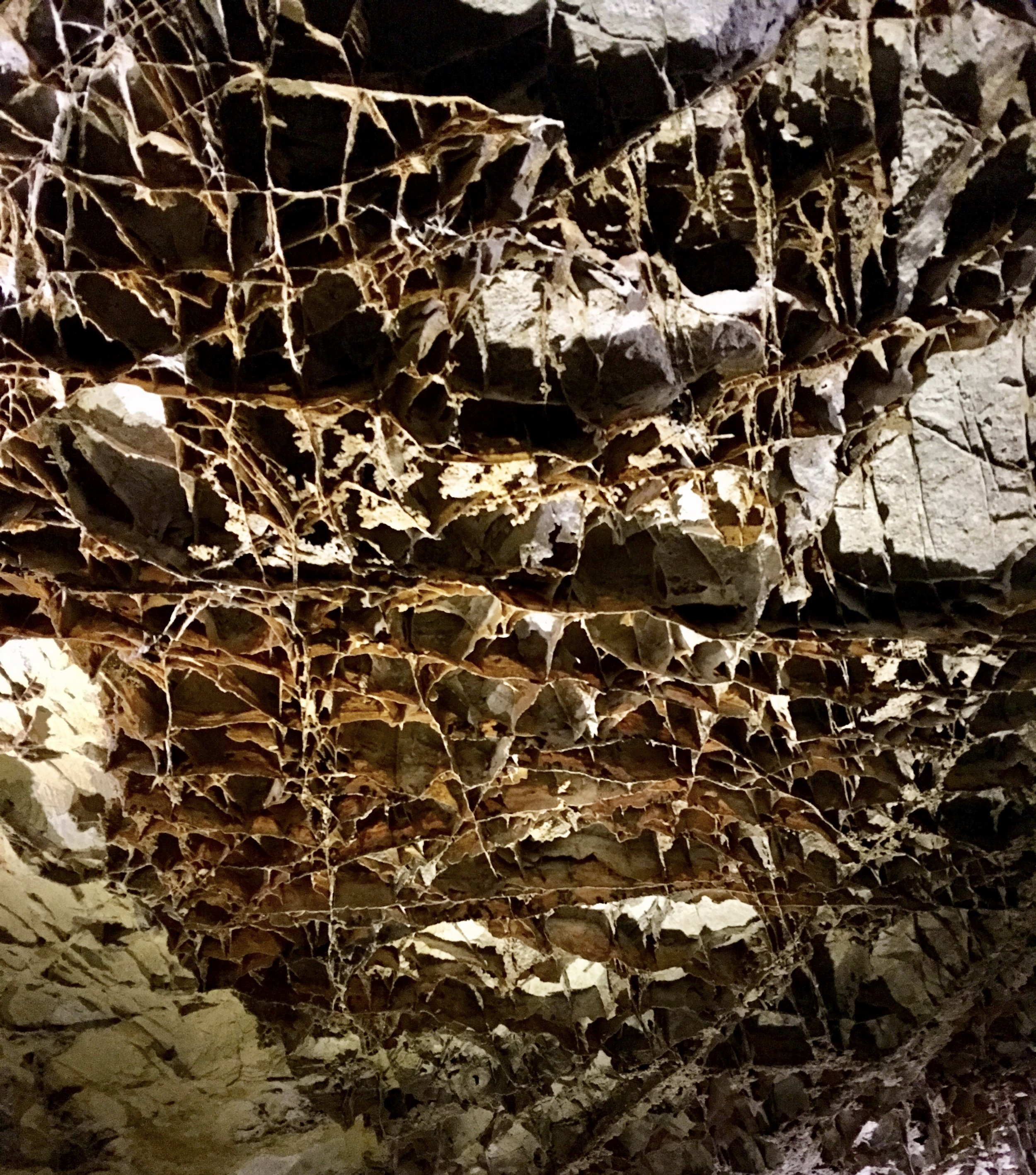 """Boxwork"" formation on the ceiling of the cave"