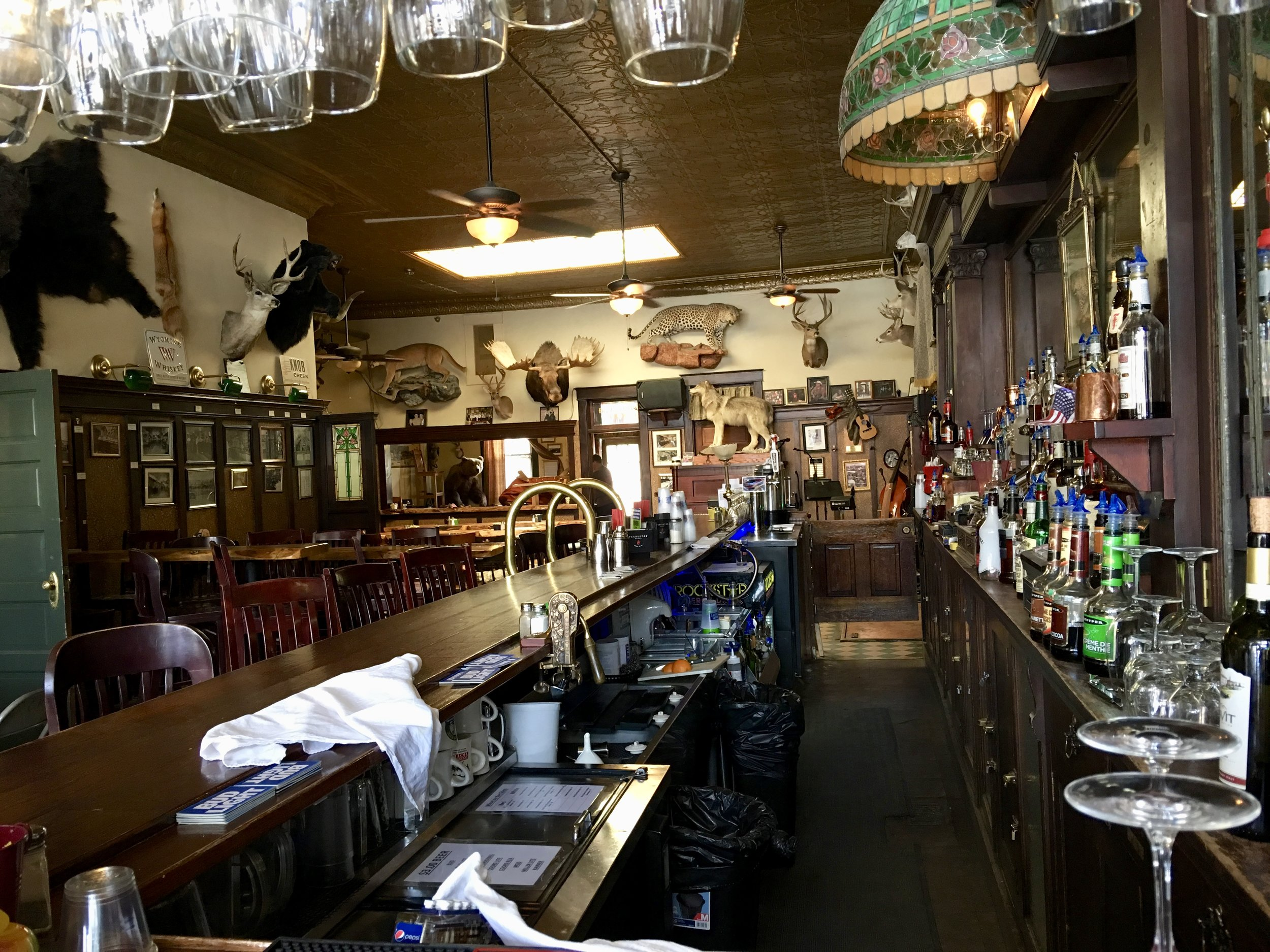 The Occidental saloon, featuring many mounted game animals.