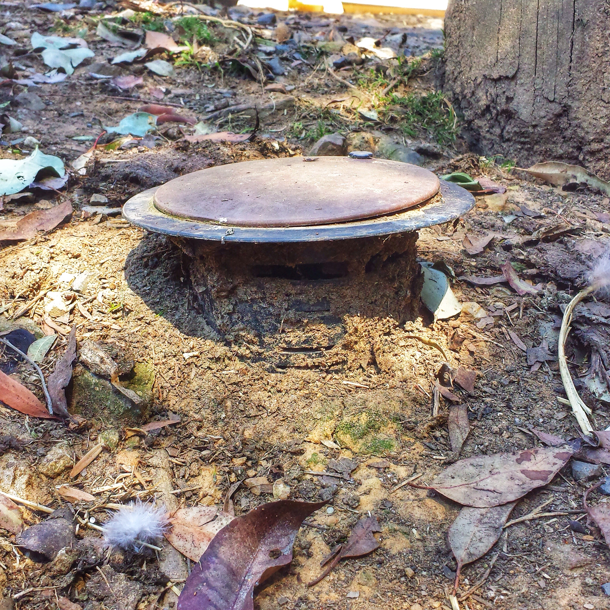 This bait station is far from effective as it is protruding significantly, the top should be flush with ground level.