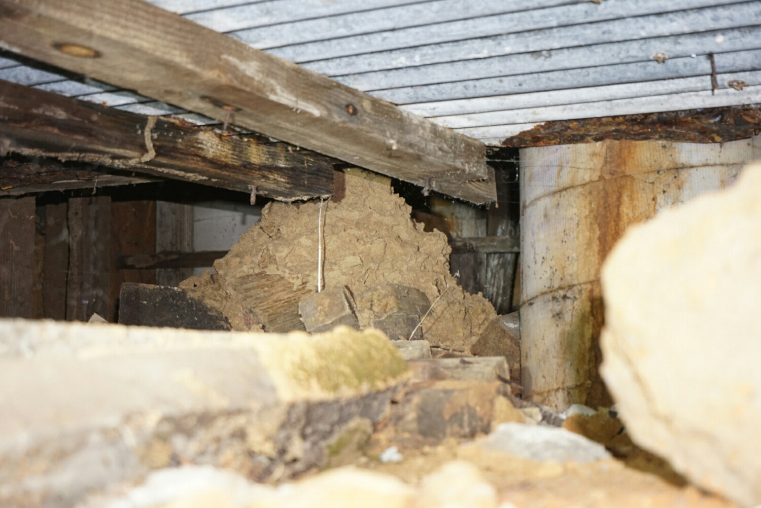 This large entry point for termites may seem obvious, but requires a thorough search in a tight subfloor space to locate. Also, having large amounts of unnecessary timber in the subfloor is just an open invitation for termites. This was discovered in a building where previous inspectors had failed to note the threat to the building.