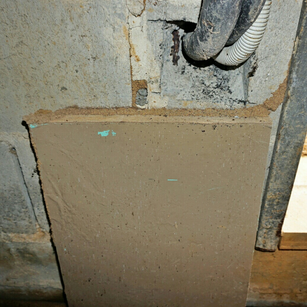 Thus mud shelter tube was found in a subfloor space. It shows how the termites used existing structures to conceal themselves. In this instance they were relying on a steel door jamb into the subfloor as a little highway that kept them hidden.