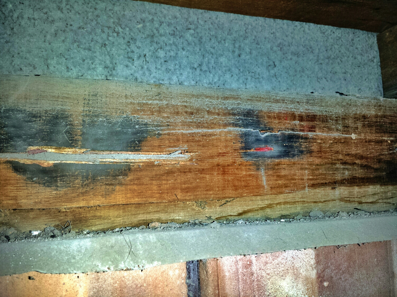 The Arsenic trioxide dust penetrates deep into galleries in the timber. Thus exposing anyone who works on the timber, (think renovation) exposed to arsenic trioxide dust.   A Schedule 7 Dangerous poison .