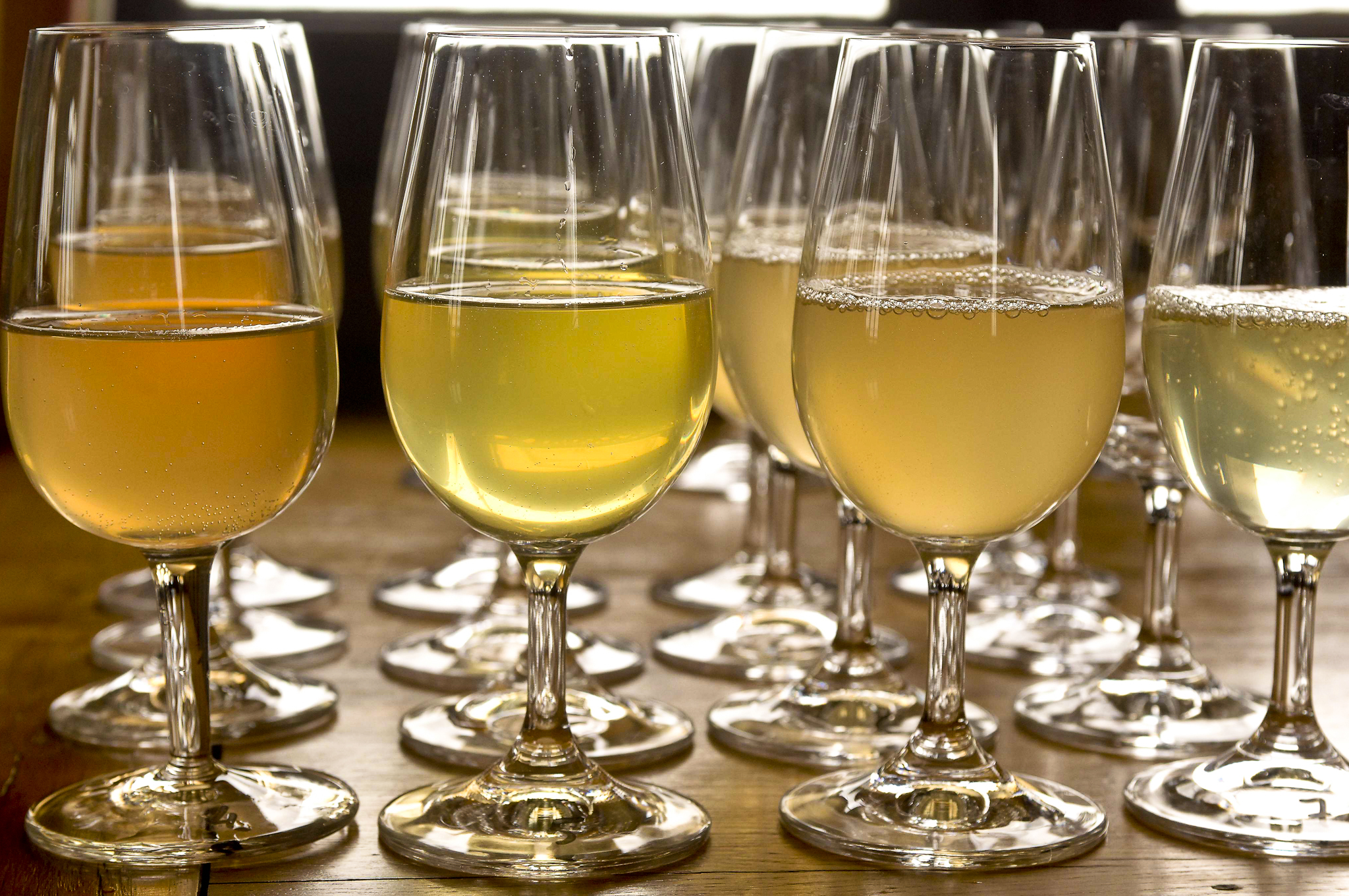 """""""Vins Claires,"""" the still wines that will be blended then mixed with sugar and yeast for a second fermentation to make Champagne"""
