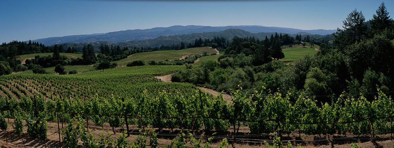 Photo Credit: Jackson Family wines