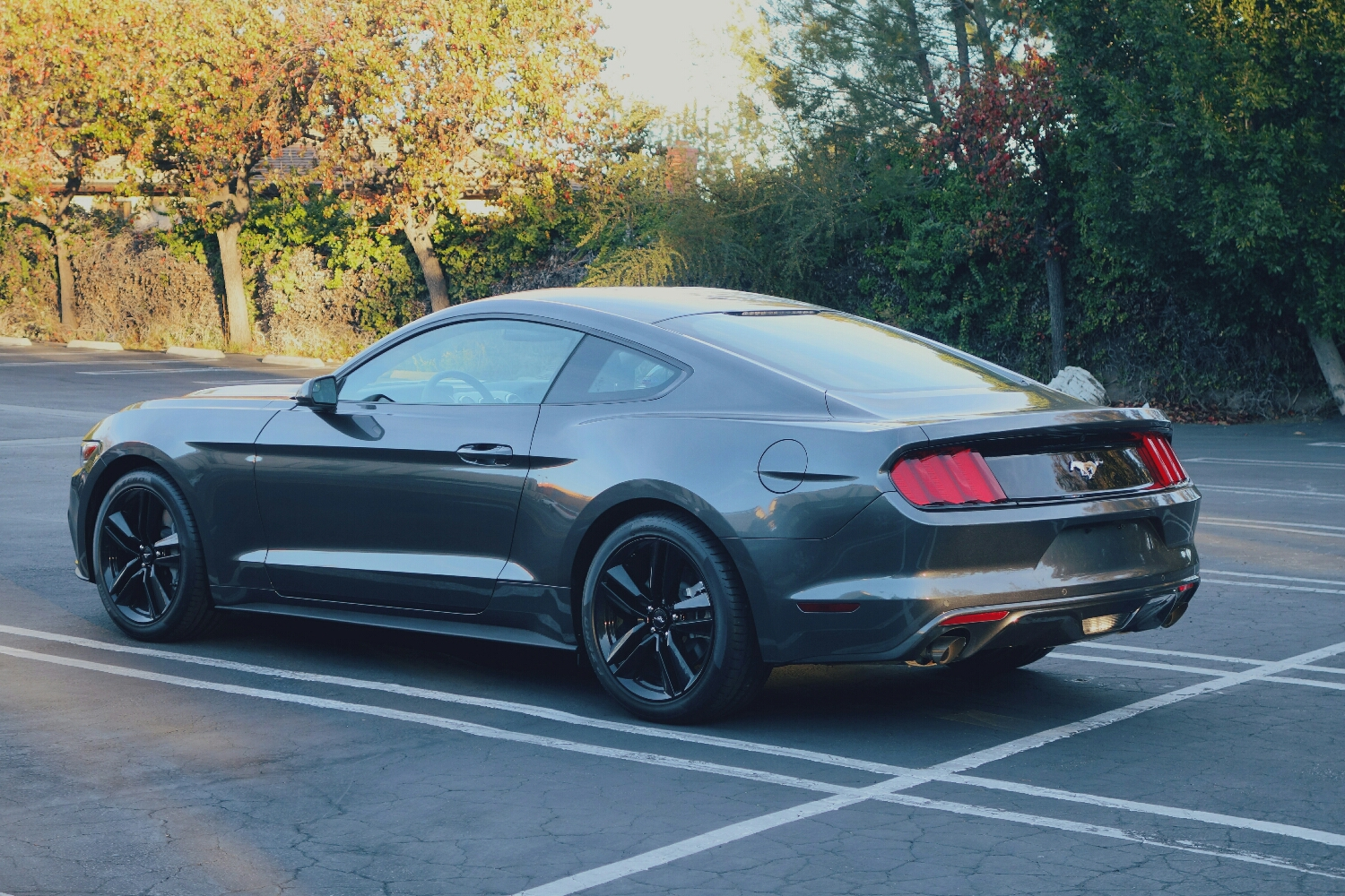 2015 Ford Mustang - Magnetic with Performance Pack