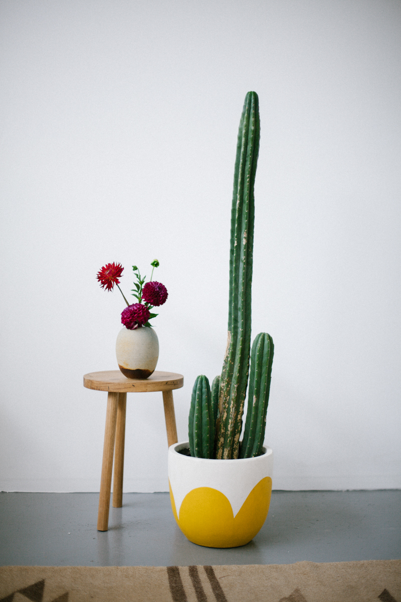 designer-mustard-petal-pot