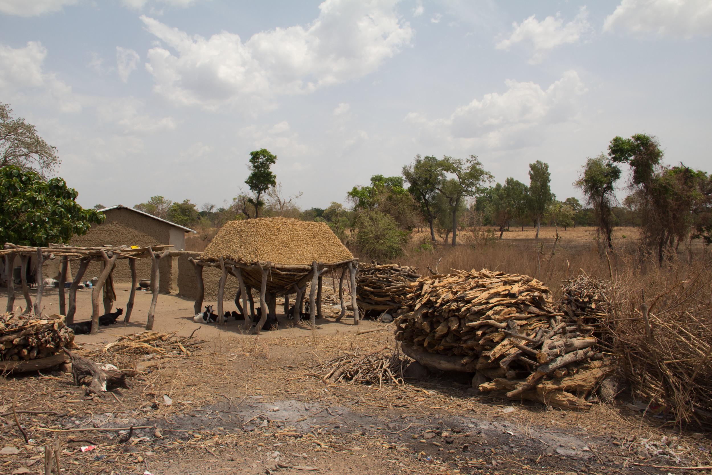 Biomass fuel stockpiles