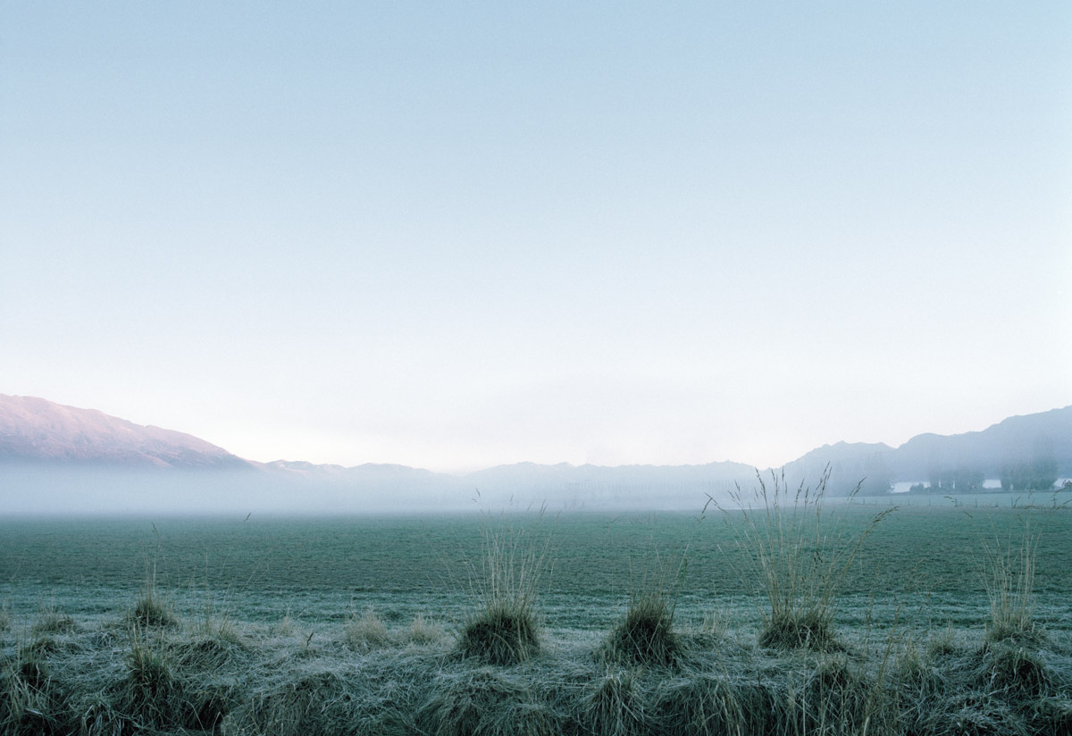 hawea flat in-fog-new zealand002-spid pye.jpg