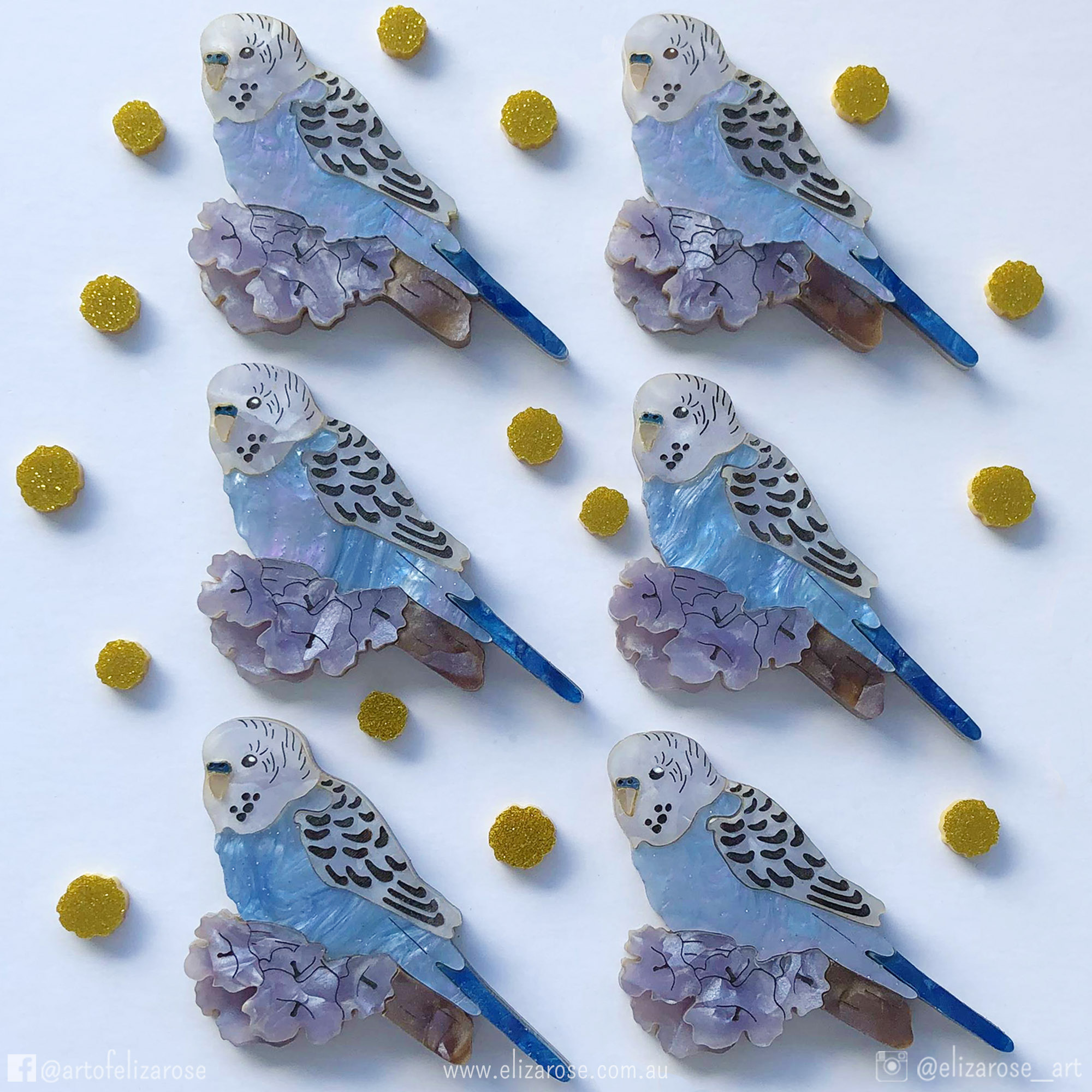Flatlay Blue Budgie (with tags).jpg