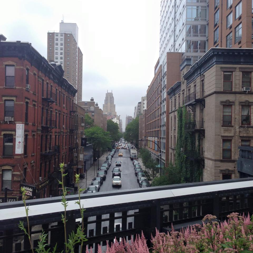 The High Line in NYC - easily my favorite city in the world (along with London)