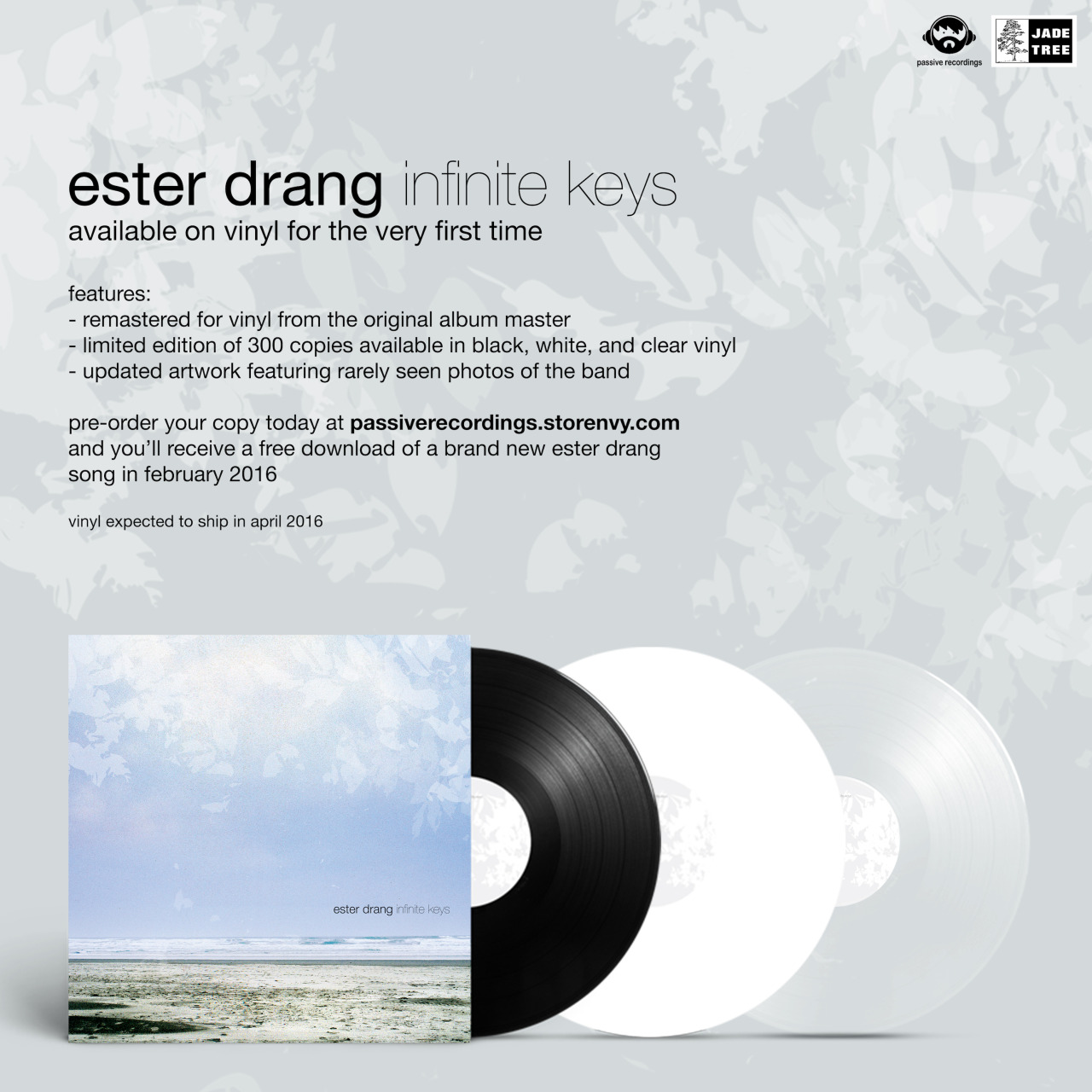 Passive Recordings  is pressing  Ester Drang 's'Infinite Keys' to vinyl for the very first time. It's been remastered from the original tapes and the digital download includes a brand new Ester Drang song.  Pre-orders are available  here  and are expected to ship in April.