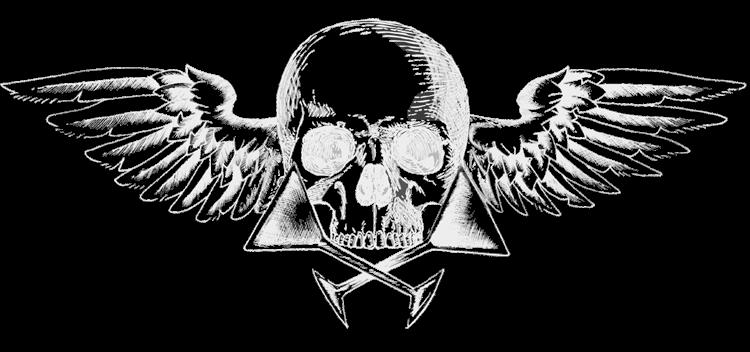 TFCSkullWings.png