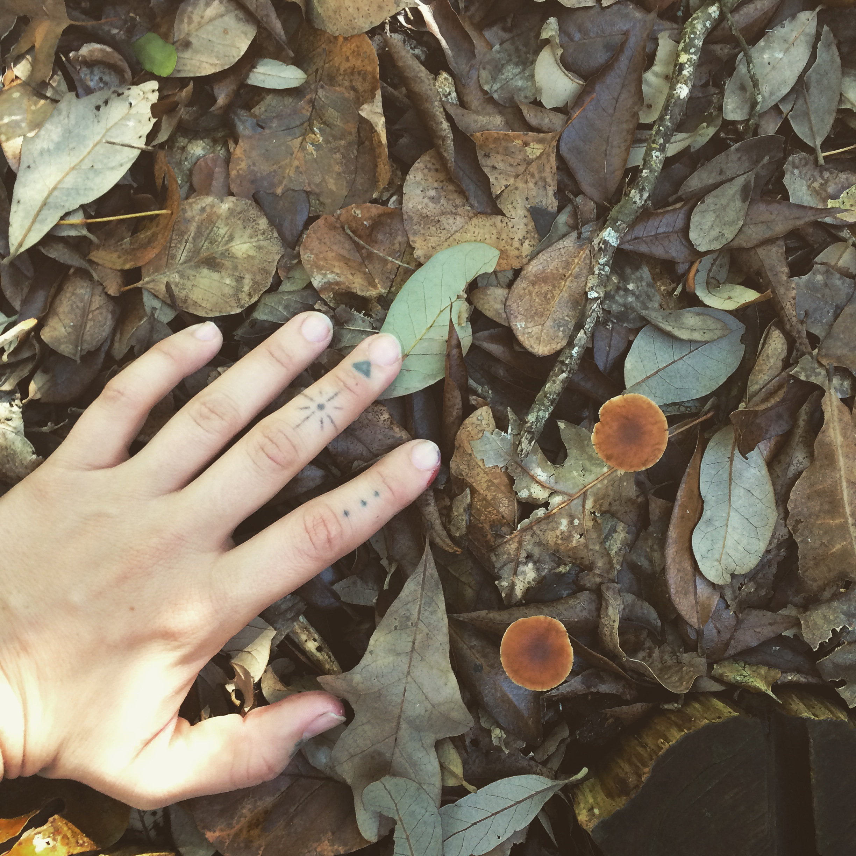 Admiring Fungi in Texas.JPG