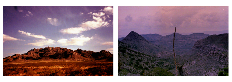 Taken by Emily Rose Theobald in  Rock Hound State Park, NM  and  Pinto Canyon, TX
