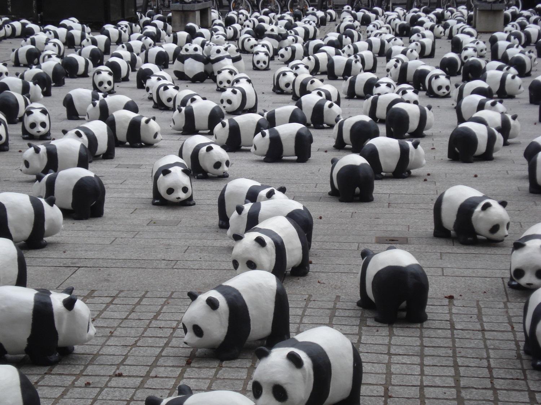 Multiple Panda updates from Google