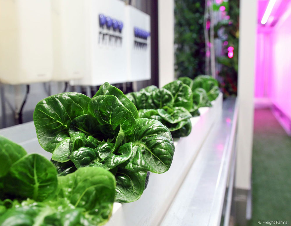 Freight-Farms-Innovative-Farming-Agriculture-Technology-Visual-Atelier-8-2.jpg