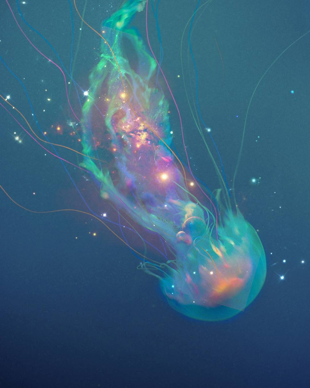 INDIGO-Visual Atelier 8-art-16.jpg