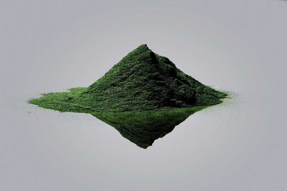 Vollebak Plant and Algae T Shirt-Visual Atelier 8-Fashion-5.jpg
