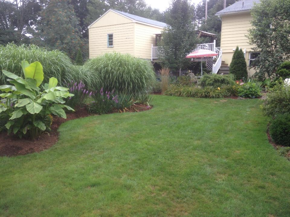 backyard retreat 2.jpg