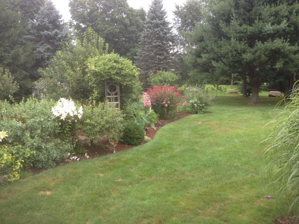 backyard retreat 3.jpg