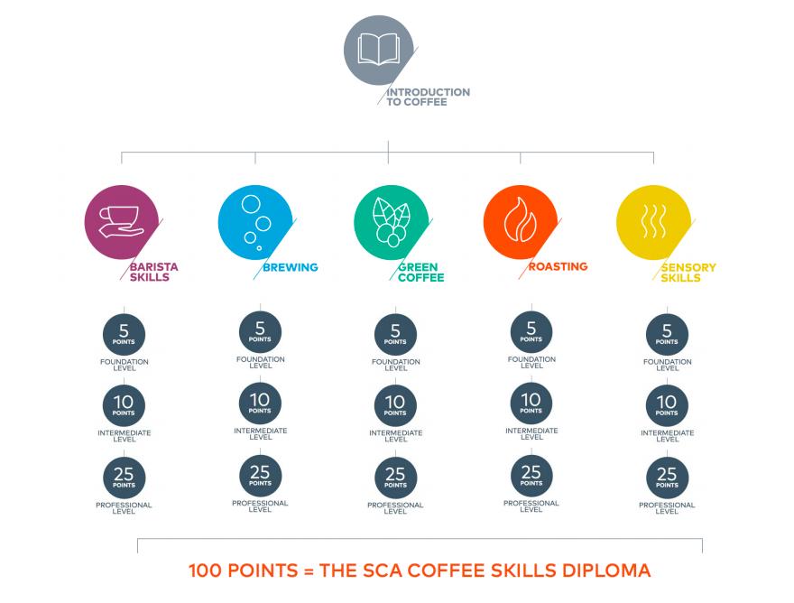 SCA Coffee Skills Program