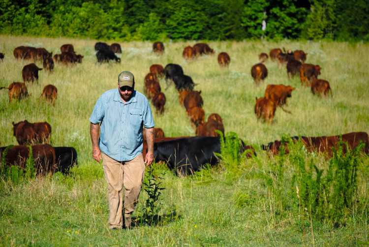 Nick and a lot of happy cows. Thanks to Melissa Brady for the photo!