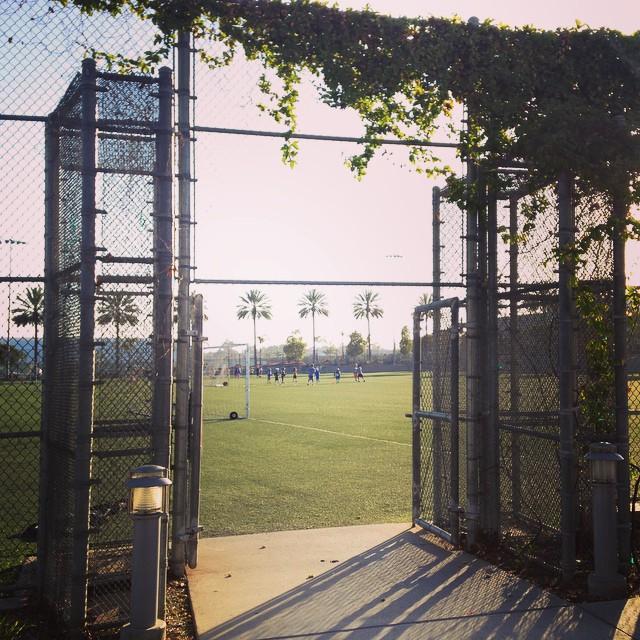 Dope men's league fields at santa monica #airportpark