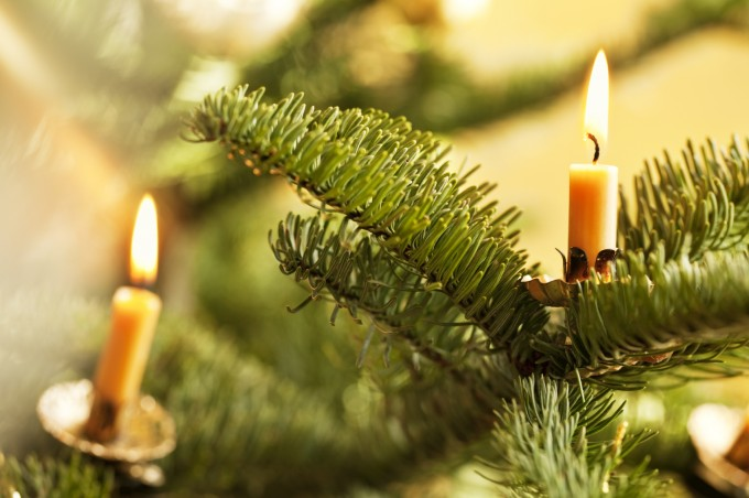 They might look nice in a photo, but candles are a serious fire hazard and should NEVER be used to decorate a tree.