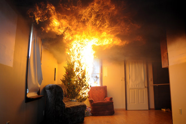 Christmas trees only take seconds to become fully engulfed in flames.
