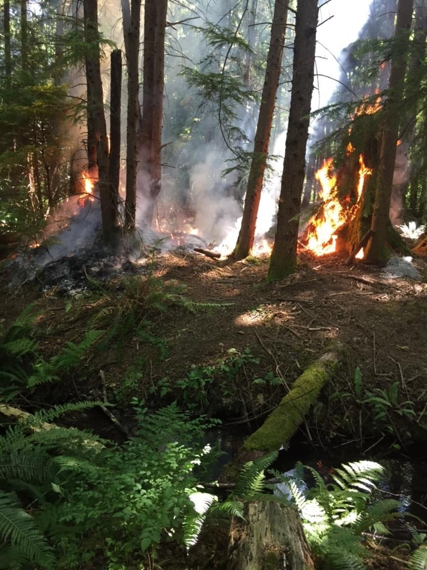 Sixteen Comox firefighters used over 2000 gallons of water and three hours to extinguish the fire