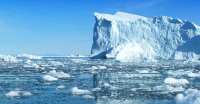 stock-photo-polar-bear-in-wildness-area-against-sky-100180085.jpg
