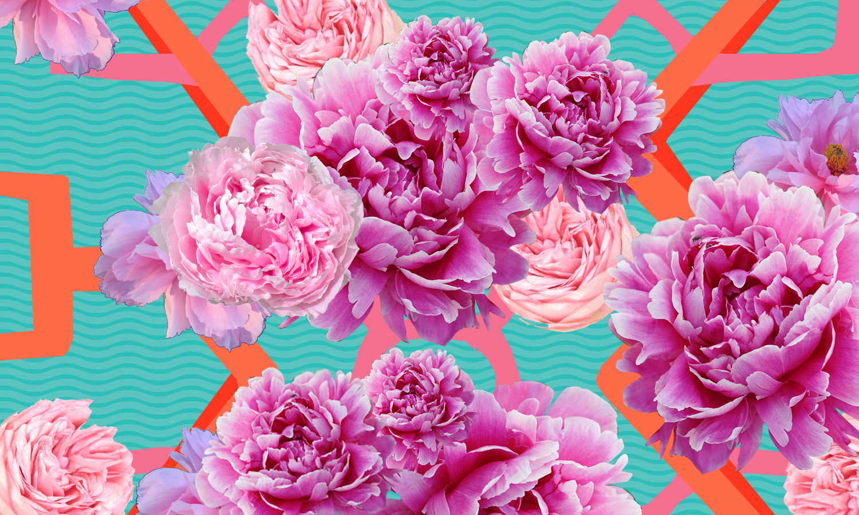 floral background.png