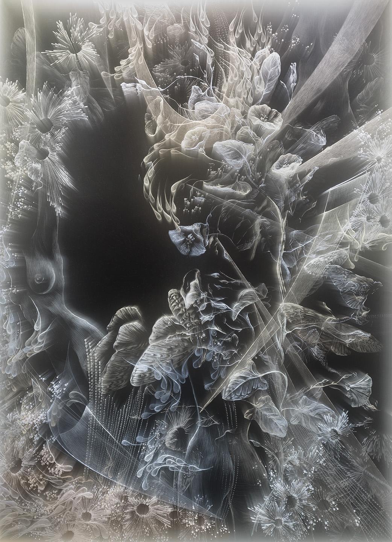 A MOTH TO A FLAME (II)