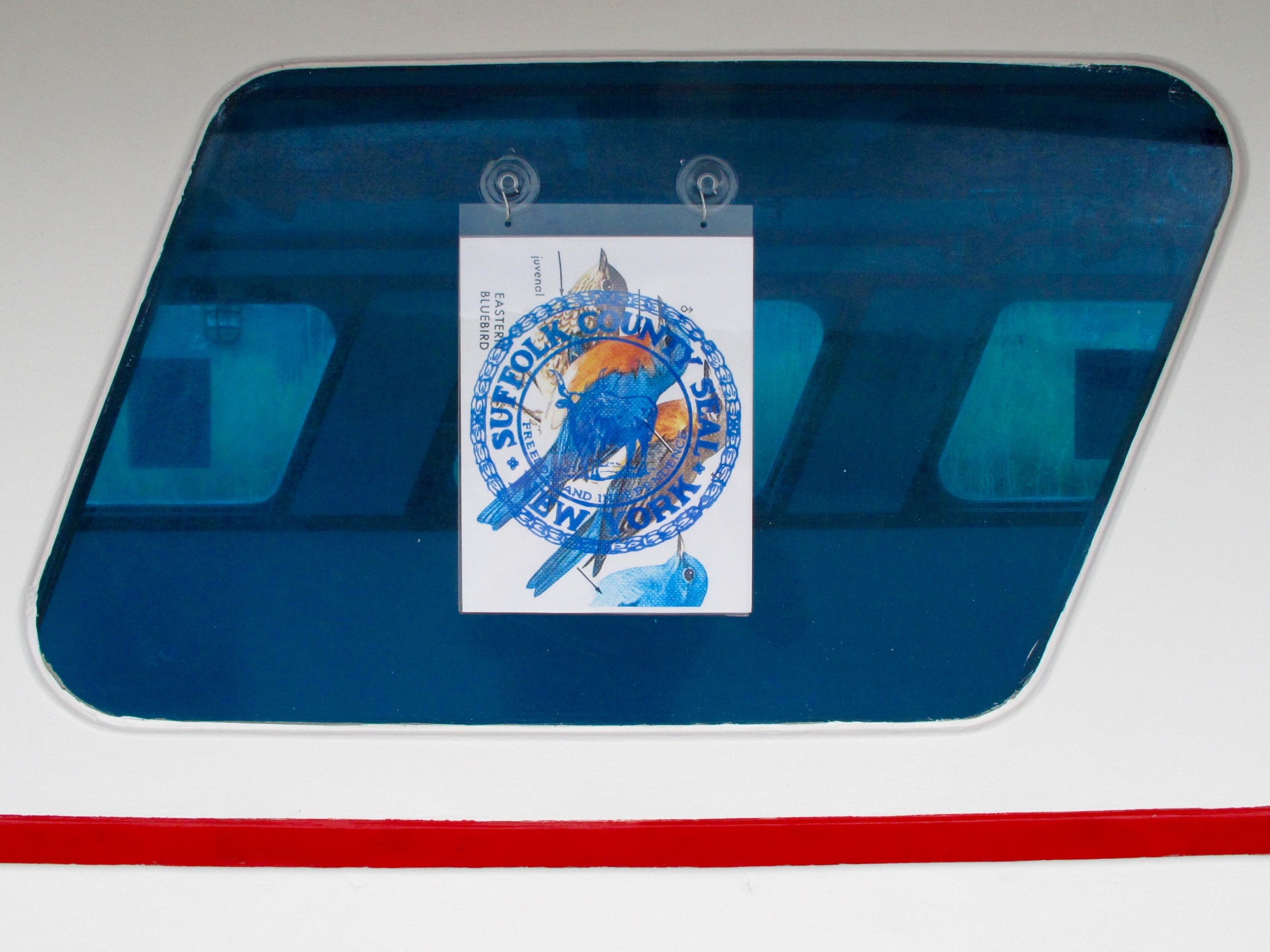 North American Blue Bird Society,Tyler Healy