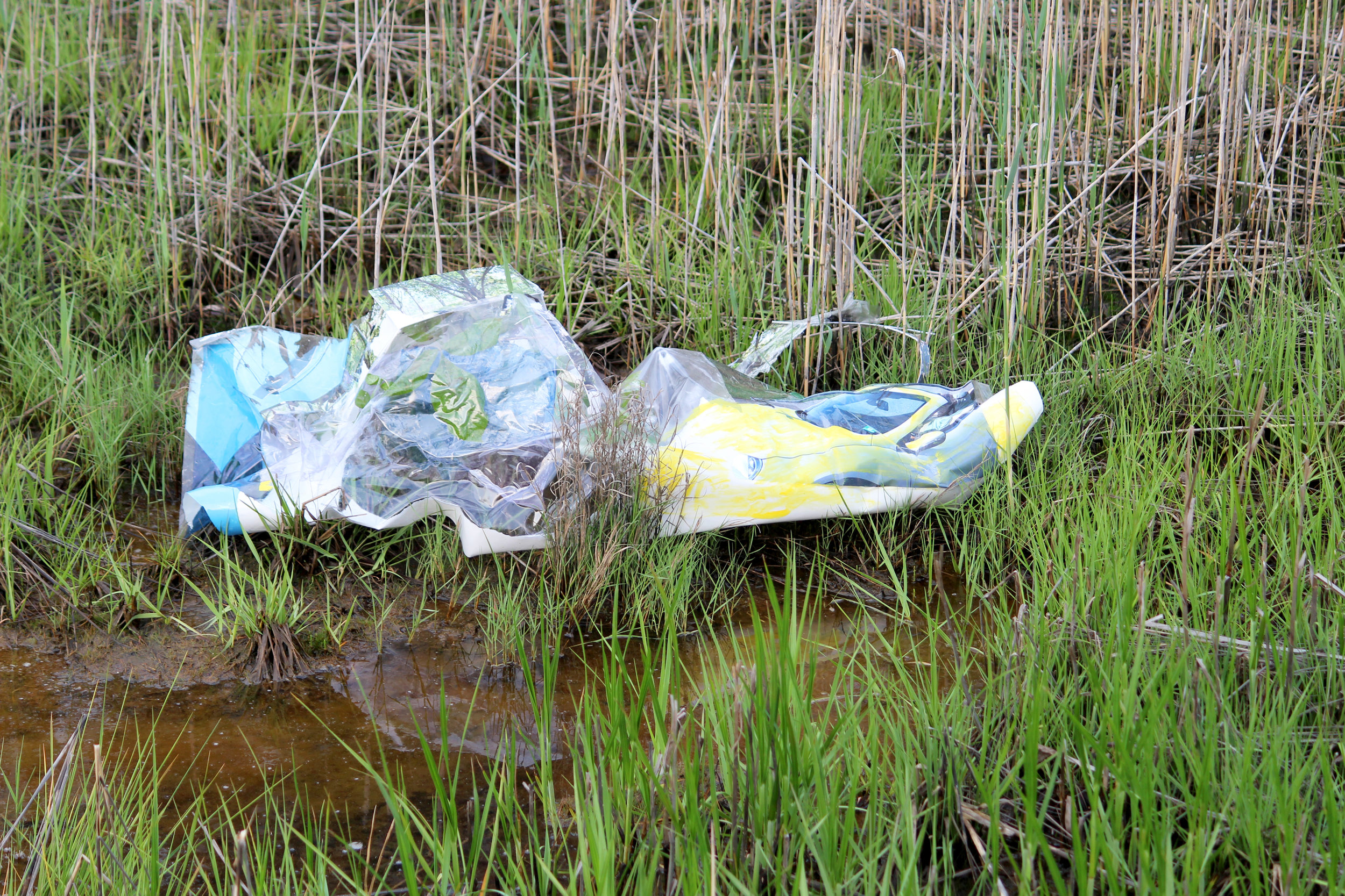 IJP,  Driving in the Sun/Garbage in the Marsh,  2018