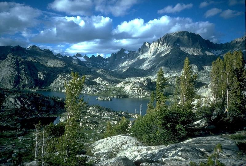 Bridger-Teton National Forest (3.4 million acres)