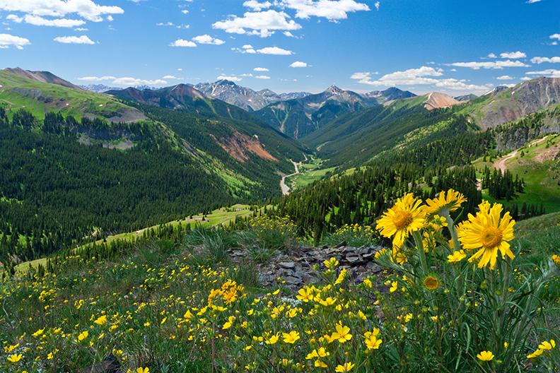 Jedediah Smith Wilderness (124,000 acres)