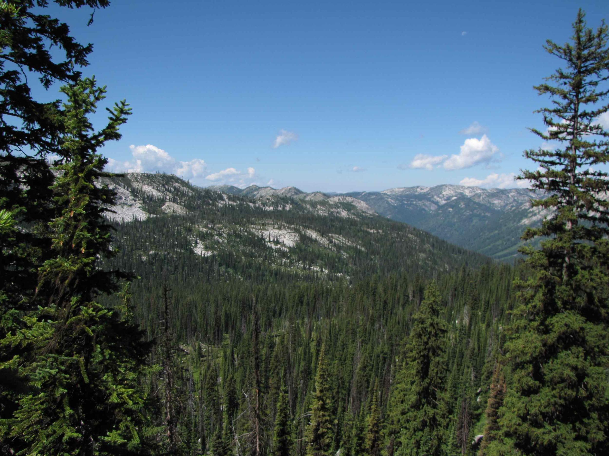 Selway-Bitterroot Wilderness (1.3 million acres)
