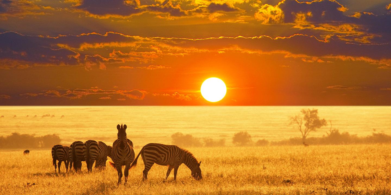 ...TO THE EDGE OF AFRICA'S KALAHARI