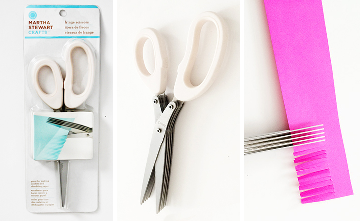 Martha Stewart Fringe Scissors from Pat Catan's.