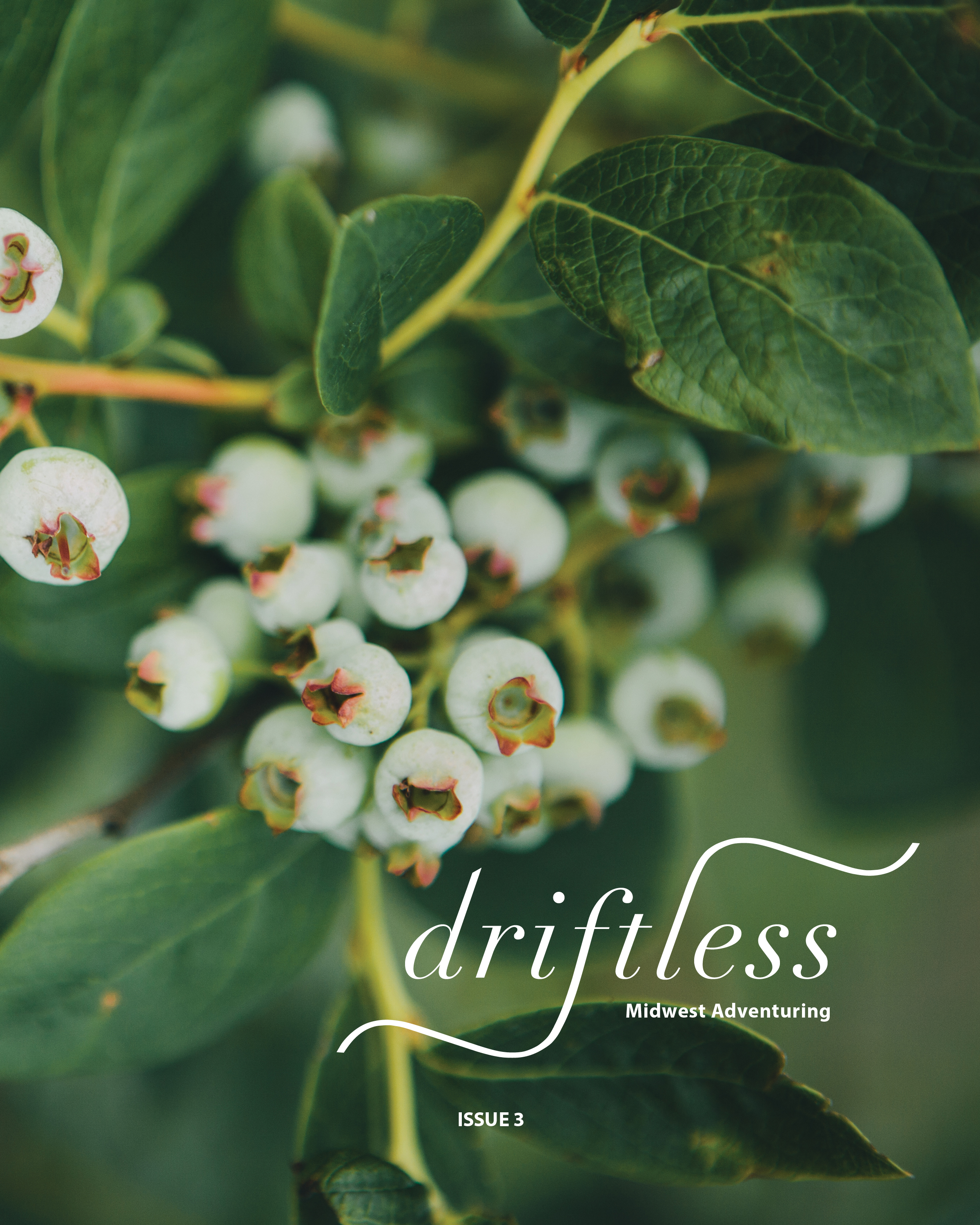 Driftless Issue 3 Cover Logo.jpg