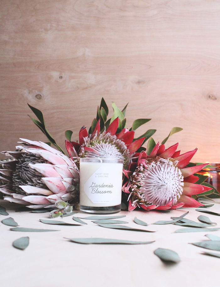 SweetDishAndDarling_GardeniaBlossom_01.png