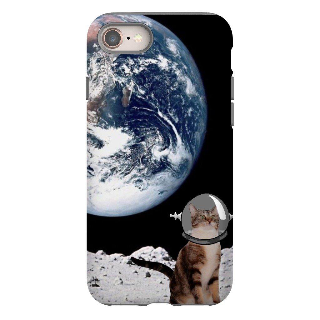 cat in space.jpg