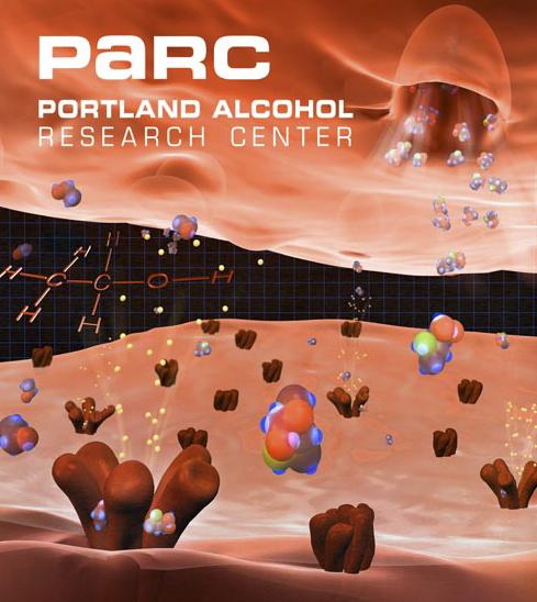 Portland Alcohol Research Center Graphic Identity